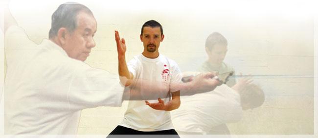 Illustration · Taï-chi chuan · yi-xin · arts martiaux traditionnels chinois