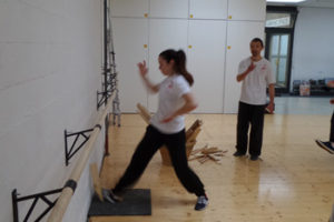 Stage Hsing-I_2015_253